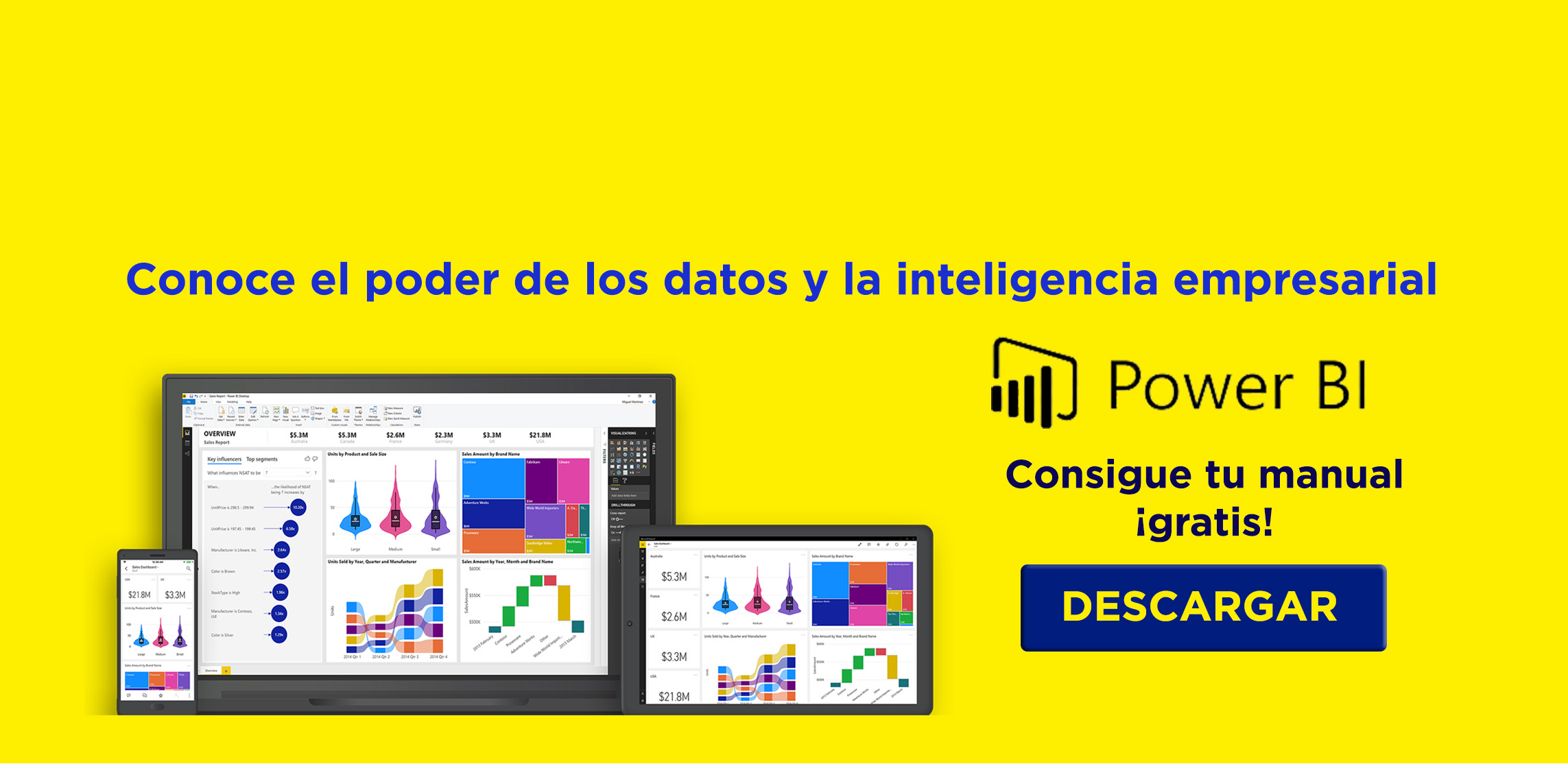 Power BI + manual