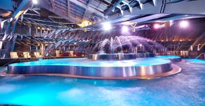 MVP CLUSTER trabaja en exitosa implantación de Project Online en la empresa líder del sector global de piscinas y wellness Fluidra